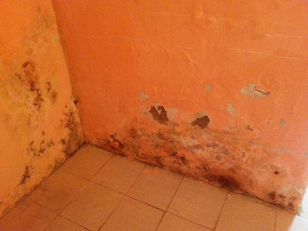 Casa seca humedad de cimientos casa seca - Humedad relativa en casa ...
